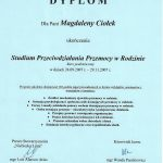 Dyplom SPPwR I